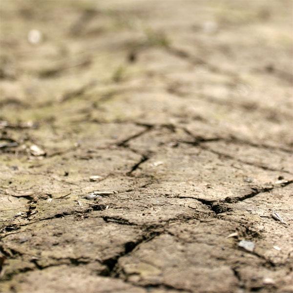Tierra seca - 乾いた土地(satb)